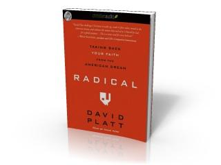 radical-cover2.jpg